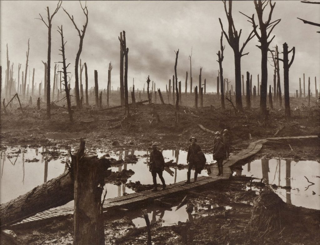 Ieper Chateau Wood 1917